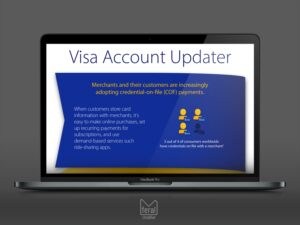 Visa Account Updater Infographic